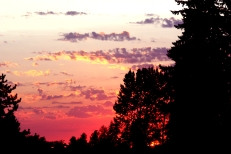 Sunset outside my house - Gina Lockhart